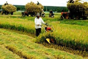 Hàn Quốc hỗ trợ 4,5 triệu USD phát triển nông nghiệp Đồng bằng sông Hồng