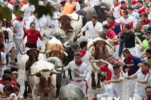 Thêm 8 người phải nhập viện trong lễ hội rượt bò tót ở Tây Ban Nha