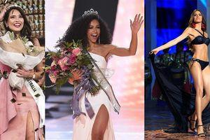 Ba nữ luật sư nhan sắc lung linh ở Miss Universe 2019