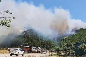Kiểm điểm các tổ chức, cá nhân để xảy ra cháy rừng