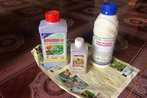 Nghi vấn bỏ thuốc sâu vào bể nước ăn đầu độc cả gia đình