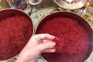 Thận trọng với 'thần dược' saffron giá gần nửa tỷ/kg chữa bách bệnh