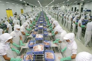 Ngành thủy sản kiến nghị không tăng lương tối thiểu trong năm 2020
