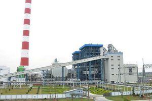 Vượt 50% kế hoạch lãi sau nửa năm, cổ phiếu Nhiệt điện Hải Phòng (HND) đạt đỉnh lịch sử