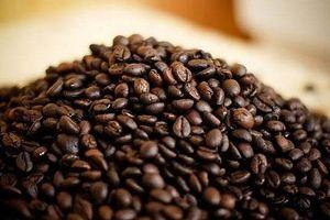 Giá cà phê hôm nay 15/7: Chưa có biến động mới