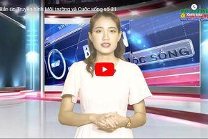 Bản tin truyền hình Môi trường và Cuộc sống số 31