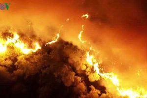 6 tháng đầu năm 2019 cả nước xảy ra 1.927 vụ cháy làm chết 59 người