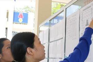 Cà Mau: Tỷ lệ thí sinh tốt nghiệp THPT đạt 96,12%