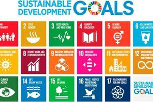 Việt Nam đứng thứ 2 Đông Nam Á về chỉ số phát triển bền vững