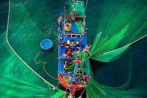 Việt Nam tuyệt đẹp trong những khoảnh khắc nhìn từ không trung