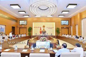 Chủ tịch Quốc hội: Cần tăng số lượng đại biểu chuyên trách ở cơ quan dân cử