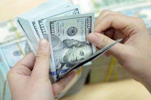 Liên tục giảm mạnh, giá USD sẽ xuống tới mức nào?