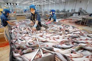 Xuất khẩu nông, thủy sản sang Trung Quốc: Sao còn phân biệt 'khó tính, dễ tính'?