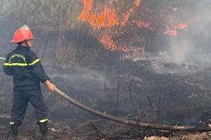 Phong tỏa đường lên bán đảo Sơn Trà vì cháy rừng