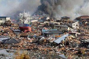 Vượt lên nghịch cảnh, Nhật Bản đã phòng chống thiên tai như thế nào?