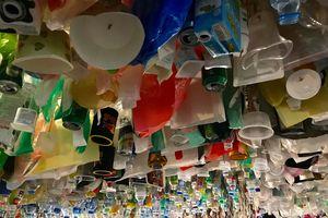 Khi trên đầu mình là... rác thải nhựa