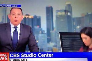 Động đất giữa chương trình thời sự, MC Mỹ trốn vội xuống gầm bàn