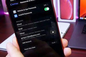 Lỗi nghiêm trọng trên iOS 13 và iPadOS beta cho phép xem mật khẩu đã lưu không cần xác thực