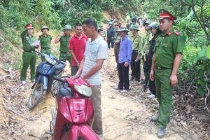 Khởi tố 3 người đốt tổ ong gây cháy rừng ở Hà Tĩnh
