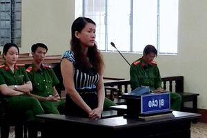 Nữ giám đốc vu khống cán bộ 'cướp 4 bao tải tiền' lĩnh án 3 năm tù