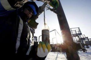 Kinh tế Nga dự kiến tăng trưởng chậm lại trong năm 2019