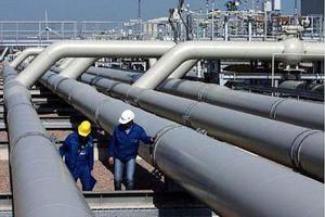 Gazprom có kế hoạch tăng mua khí đốt ở Trung Á