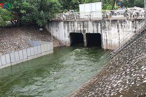 Công nghệ làm sạch sông Tô Lịch chỉ là giải pháp cục bộ