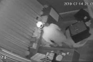 Clip: Tên trộm phá két sắt trong chưa đầy 20 phút, lấy tài sản trị giá 5 tỷ đồng của Nhật Kim Anh