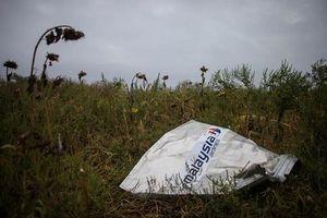 Vụ bắn rơi máy bay MH17 khiến gần 300 người chết: Ukraine bắt giữ người vận chuyển tên lửa
