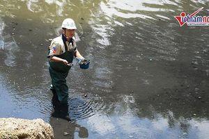 Chuyên gia Nhật: Đã có cách giữ vi sinh vật không trôi theo nước hồ Tây