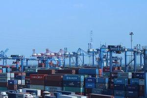 TPHCM: Hàng hóa XNK tăng trưởng ổn định tác động tích cực đến số thu