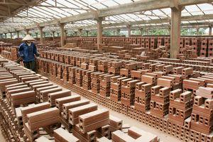 Viglacera Đông Triều: Kinh doanh thụt lùi, nợ vay phình to