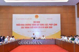 Dự kiến sẽ trình Quốc hội thông qua Luật Thư viện tại Kỳ họp thứ 8