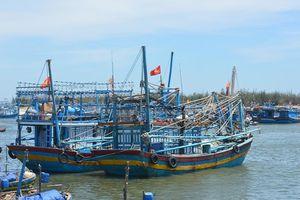Ngăn chặn chủ tàu cá 'làm trò' lấy tiền hỗ trợ dầu