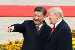 Cố vấn Trung Quốc: Ông Trump đã bớt cực đoan, đang thực dụng hơn