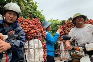 Giá vải thiều kỷ lục, nhà vườn Bắc Giang thắng lớn