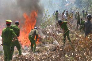 Quảng Trị: Cả trăm người 'chiến đấu' với 'giặc lửa' để cứu rừng