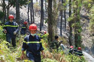 Huy động hàng ngàn người chữa cháy rừng thông tại Huế