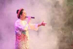 Đinh Hiền Anh, NSND Thanh Hoa, Trọng Tấn... kêu gọi 300 triệu ủng hộ khắc phục sự cố cháy rừng