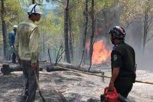 Cháy rừng ở Huế và Quảng Nam 'uy hiếp' đường dây truyền tải điện quốc gia