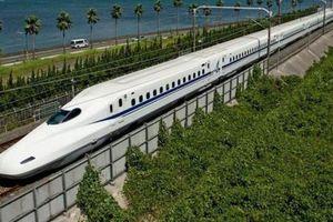 Chuyên gia lý giải phương án đầu tư đường sắt tốc độ cao hiệu quả