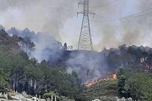 Ngành điện tích cực tham gia xử lý cháy rừng tại Huế và Quảng Nam