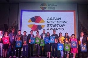 Lựa chọn startup Việt cho giải thưởng Rice Bowl Startup Awards