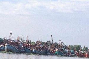 Ngư trường gặp khó khi nhiều tàu cá Kiên Giang bám bờ, không ra khơi