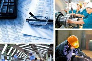 Phát triển kinh tế tư nhân - Một động lực quan trọng của tỉnh Bạc Liêu