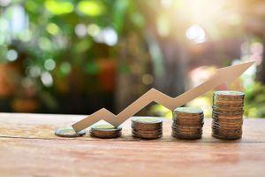 Big-Trends: Tiền sẽ chảy vào midcap, penny