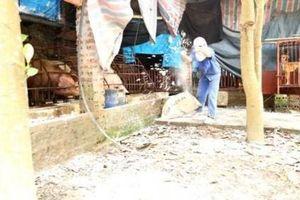 Hà Nội: Gần 100 xã phường đã qua 30 ngày không phát dịch tả lợn Châu Phi