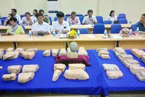 Công bố kết quả sơ bộ khai quật khảo cổ di tích Đồng Miễu ở Phú Yên