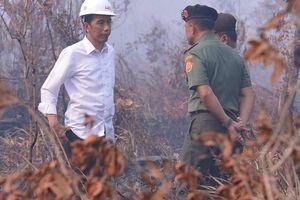 'Tổng thống Indonesia phải khắc phục hậu quả thảm họa cháy rừng'