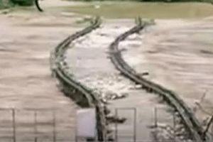 Lũ lớn cuốn trôi cả cầu sắt ở Trung Quốc
